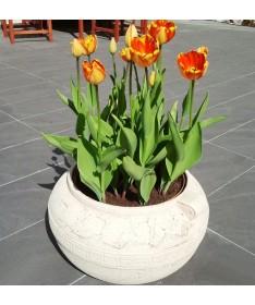 Graikiškas keramikos vazonas